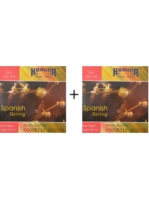karuna-acoustic-guitar-strings-pair